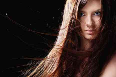 Camden hair - Full Head of Foils Highlights - Save 37%