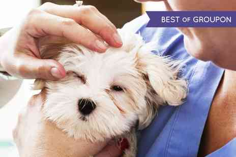 The Vet - Pet Health Check Up - Save 42%