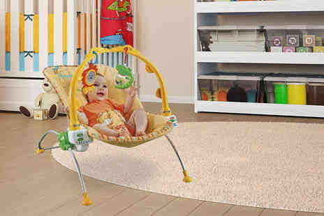 Dream Price Direct - Fisher Price rocking baby bouncer - Save 53%