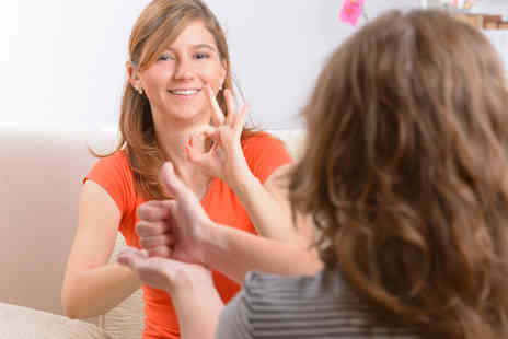Centre of Excellence - Online British sign language course - Save 87%