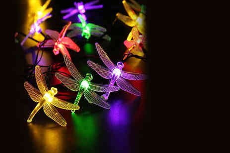 Advanced Polymer - Set of solar powered dragonfly garden lights - Save 67%