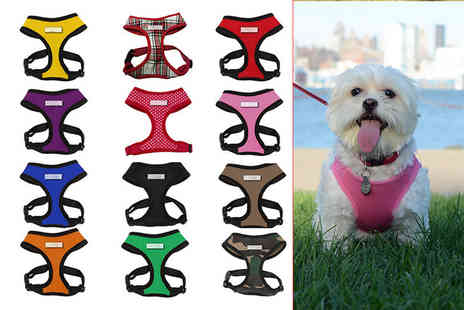 Jazooli - Mesh pet harness choose from 12 colours - Save 57%