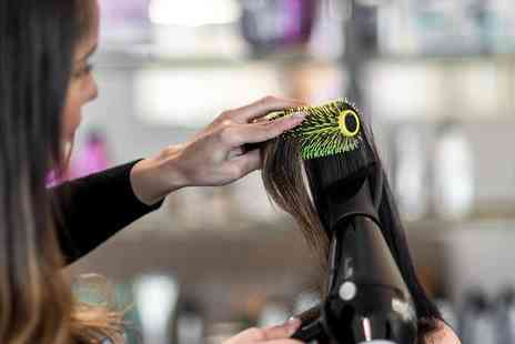 Hair Organics - Blow Dry Treatments - Save 0%