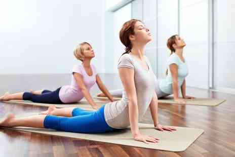Rosanna Yoga - Five or Ten Yoga Group Classes - Save 46%
