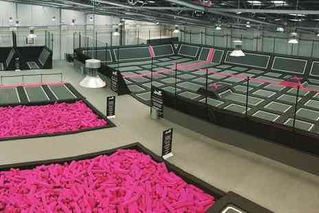 Freedog - One or Two Hour Trampoline Park Access for Up to Four - Save 30%