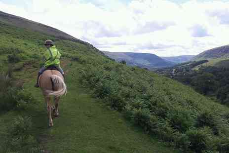 Grange Trekking - Horse Riding Lesson and 60 Minute Trek for One or Two - Save 56%