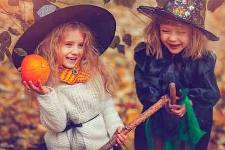 Whilton Locks Garden village - Halloween Show & Afternoon Tea for an Adult and Up to Two Children - Save 0%