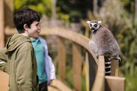 ZSL Whipsnade Zoo - Visit to ZSL Whipsnade Zoo for Two Adults and One Child - Save 0%