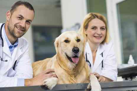 Online Acadmies - Veterinary Support Assistant Course - Save 85%