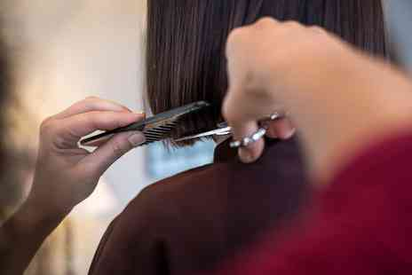 HT by Sakurami - Hair Tinting with Blow Dry - Save 0%