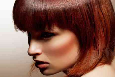 Salon 361 - Cut and Blow Dry with T Section, Full Head of Colour, Conditioning or Half Head of Highlights - Save 0%