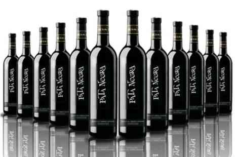 Vineyard Club - 12 Bottles of Pata Negra Cabernet Sauvignon Red Wine With Free Delivery - Save 67%