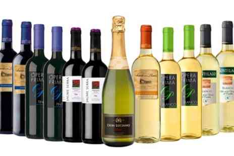 MONTE REGIO ALIMENTACIÓN ARTESANAL SOCIEDAD ANÓNIMA - 12 Bottle Case of Red, White or Mixed Spanish Wine With Free Delivery - Save 51%