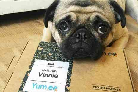 Yum.ee Pet Foods - Two personalised dog treat boxes - Save 50%