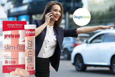 WeightWorld - 10 day supply of Slim Fizz - Save 0%
