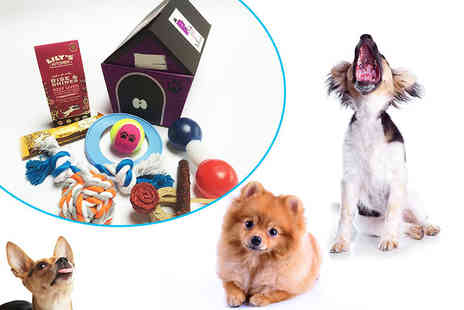 Pet Presents - A toy and treat five item surprise hamper for dogs - Save 0%