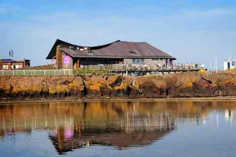 The Scottish Seabird Centre - The Scottish Seabird Centre Entry For Two or Family of Four - Save 56%