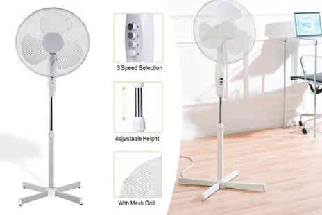 Rynz Collection - 16 Inch Pedestal Fan - Save 36%