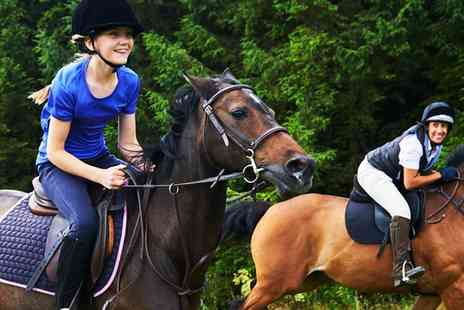 Lime Park - 30 Minute Riding Lesson for One or Two Children or 60 Minute Riding Lesson for One or Two Adults - Save 50%