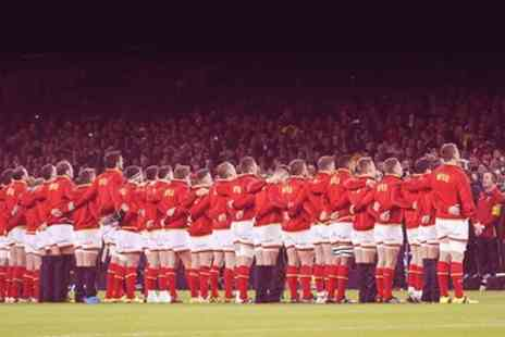 Welsh Rugby Union - Wales Rugby v Argentina One Under 16 or Adult Ticket on 12 November - Save 0%