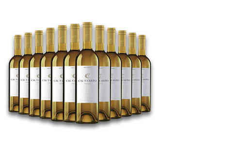 Easy Gifts - 12 bottles of award winning Cal Y Canto white wine - Save 0%
