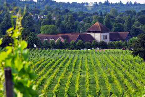 Denbies Wine Estate - Food & Wine Tasting for 2 - Save 53%