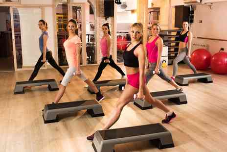Elysium Gym - Ten Passes for Gym or Fitness Classes, or a One Year Membership - Save 75%