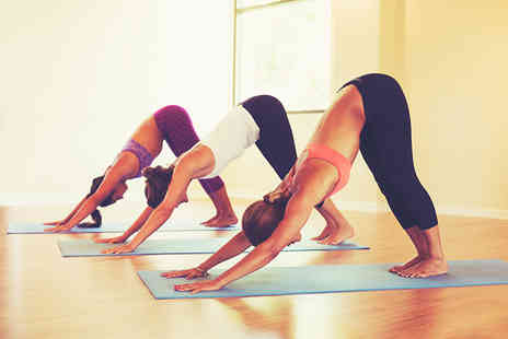 Tara Yoga Centre - Five yoga classes from a choice of yoga disciplines - Save 68%