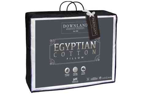 Groupon Goods Global GmbH - Up to Eight Downland Bedding Egyptian Cotton Pillows - Save 0%