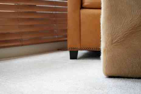 Mops And Buckets - Carpet Cleaning for Two Rooms with Optional Hallway Clean - Save 42%