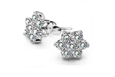 NEoffers  - Snow Flake Earrings - Save 57%