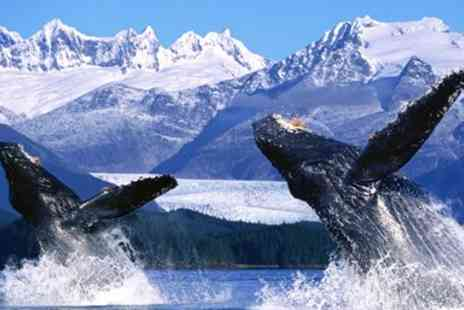 Ahoy Cruises - 14 Night All Inclusive Alaska Cruise with Chicago & Seattle - Save 0%