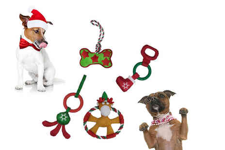 Dream Price Direct - Festive dog toy - Save 0%