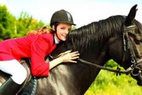 Sweetlands Riding School - Horse Riding Lesson and Hack - Save 60%