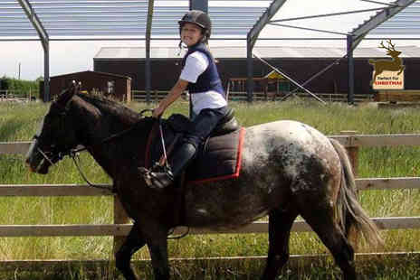 Mill House Riding Centre - 30 minute pony riding lesson for ages 3, 6 with a soft drink - Save 40%
