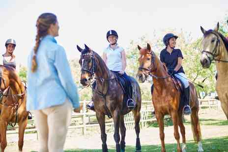 Lee Hill Riding School & Livery - One or Three 60 Minute Private Horse Riding Lessons for One - Save 63%