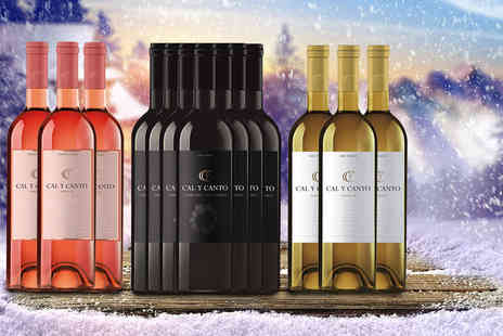 Easy Gifts - 12 bottles of award winning Cal Y Canto Spanish wine - Save 73%