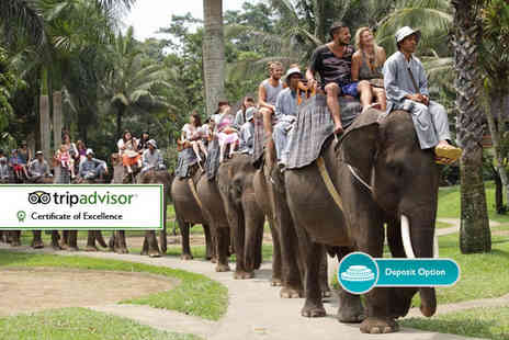 THG Holidays - Four Star 10 day Bali break, flights, elephant safari & bathing experience, meals and more - Save 0%