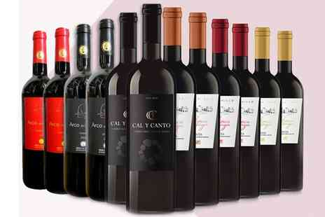 Karpe Deal S.L. - 12 Bottle Case of Mixed Spanish Red Wine With Free Delivery - Save 0%