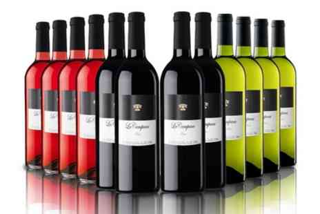 The Vineyard Club - 12 or 16 Bottles of Red, White, Rose or Mixed Wine With Free Delivery - Save 65%