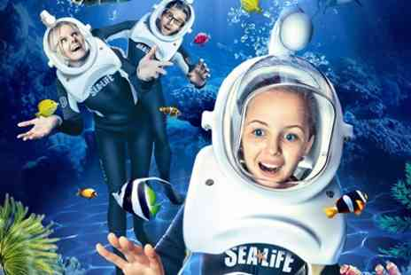 SEA LIFE Manchester - Sea Trek Experience and Souvenir Photo - Save 0%