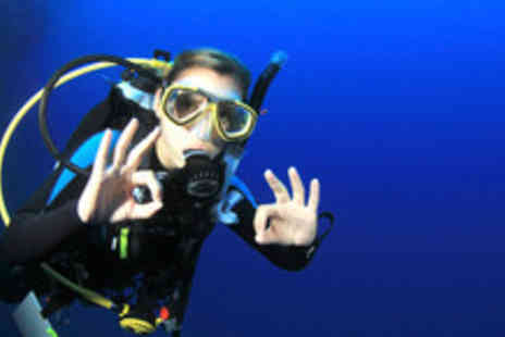 Scuba Pursuits - 3 Hour PADI Discover scuba diving experience for One - Save 80%