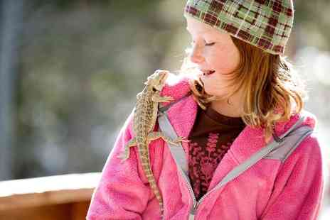 The Animal Ark Pet Store - Exotic Animal Encounter Birthday Party for Up to Ten Children - Save 0%