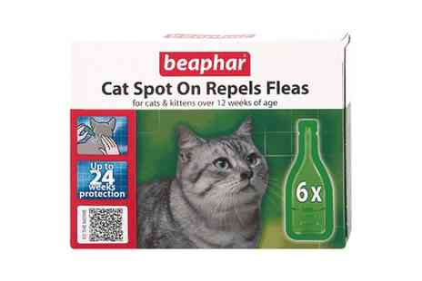 Groupon Goods Global GmbH - Beaphar Cat Spot On Repels Fleas for Cats and Kittens Over 12 Weeks 24 Weeks Cover - Save 9%