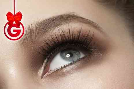 lush lash bar - Individual Express Lashes, HD Brows with Tint or Both - Save 0%