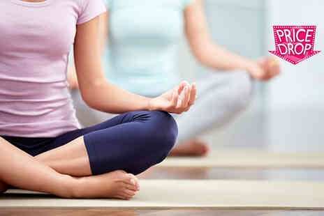 Centre of Excellence - Online yoga diploma course know your asana - Save 95%