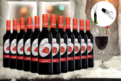 Easy Gifts - 12 bottles of Merlot and a sommelier wine decanter - Save 56%