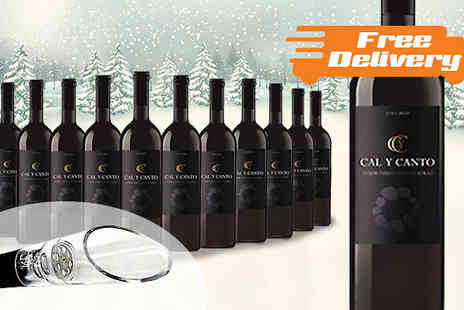 Karpe Deal SL - 12 Bottles of Award Winning Castillo Red Wine With Free Delivery - Save 74%
