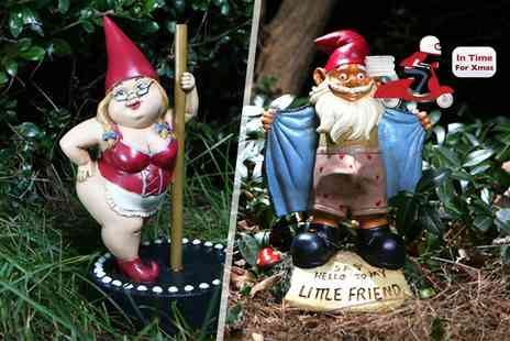 Wowcher Direct  - Four naughty garden gnomes - Save 0%
