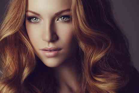 Live True - Wash, Cut and Blow Dry with Pureology or Redken Treatment - Save 73%